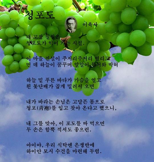 Green grapes-60.jpg
